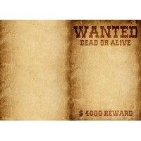 Обложка для тетрадных блоков N 10 Wanted (Артикул 93187KK)